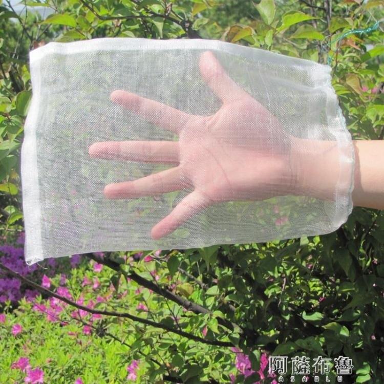 防鳥網 火龍果防蟲網套防鳥水果套袋葡萄果樹網袋防果蠅瓜果尼龍保護 袋