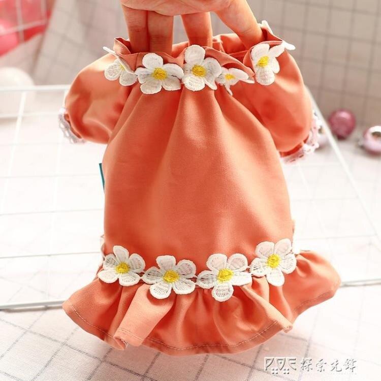 網紅小狗狗衣服泰迪博美春夏裝雞蛋花邊裙圓領衫衛衣夏季薄款公主