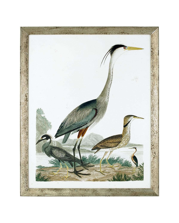 """Large Heron Family I"" Art Print"