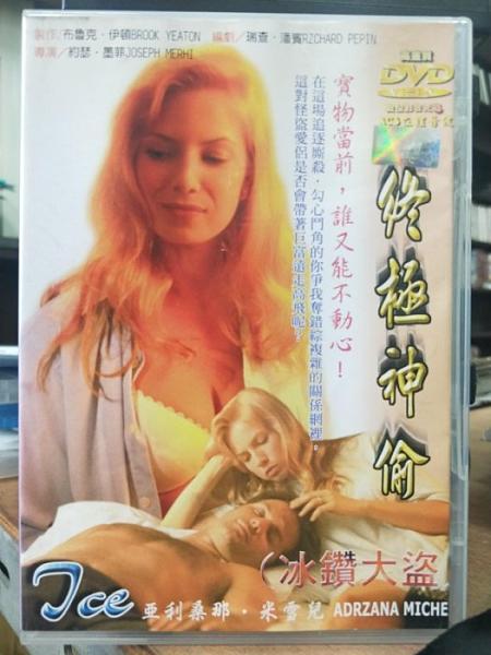 挖寶二手片-T01-429-正版DVD-電影【終極神偷】-亞利桑那 米雪兒(直購價)