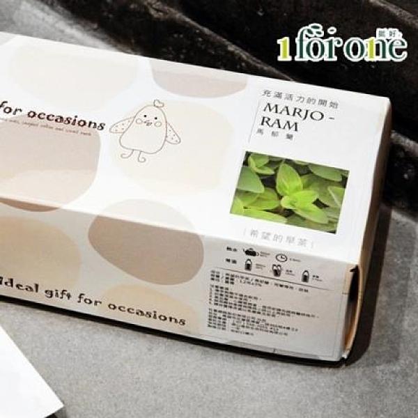 【南紡購物中心】1 for one.希望的早茶-馬郁蘭(20入/盒)