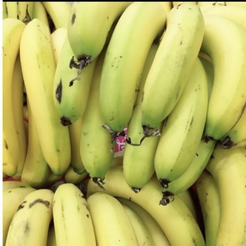 嘉義山區自產山蕉/1斤15元(可超商取貨10斤)