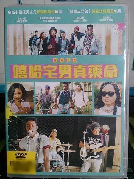 挖寶二手片-N05-024-正版DVD-電影【嘻哈宅男真藥命】-沙梅克摩爾 東尼雷佛羅里(直購價)