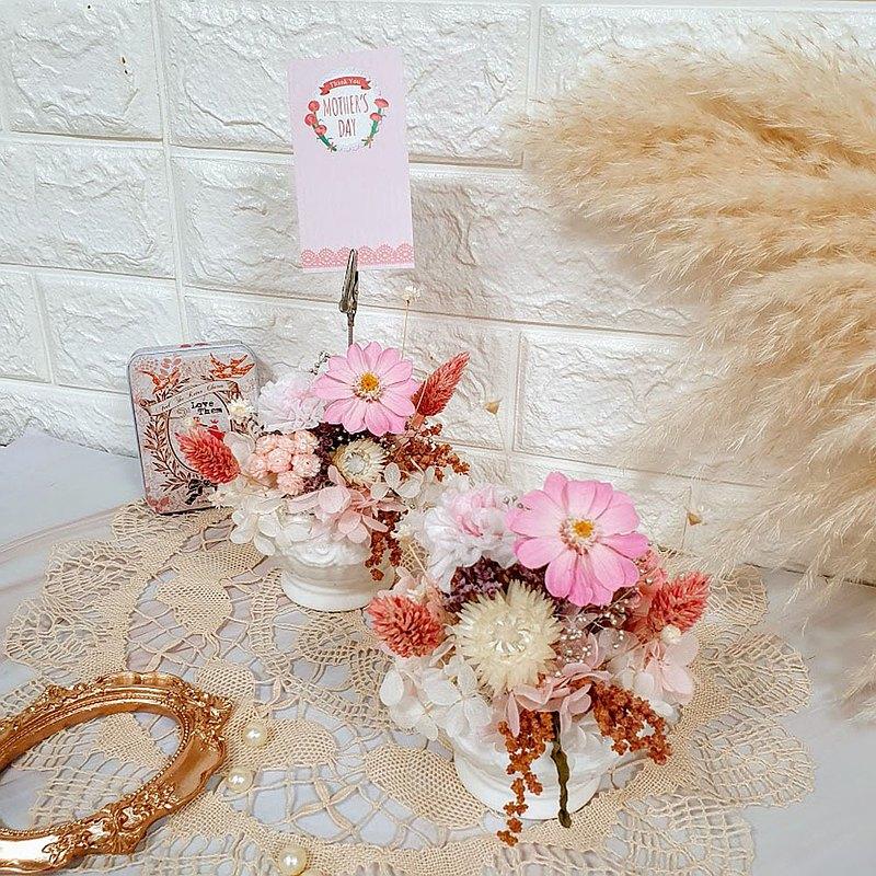 永生康乃馨小盆花 附提袋 可代寫卡片 母親節 禮物 永生花 盆栽