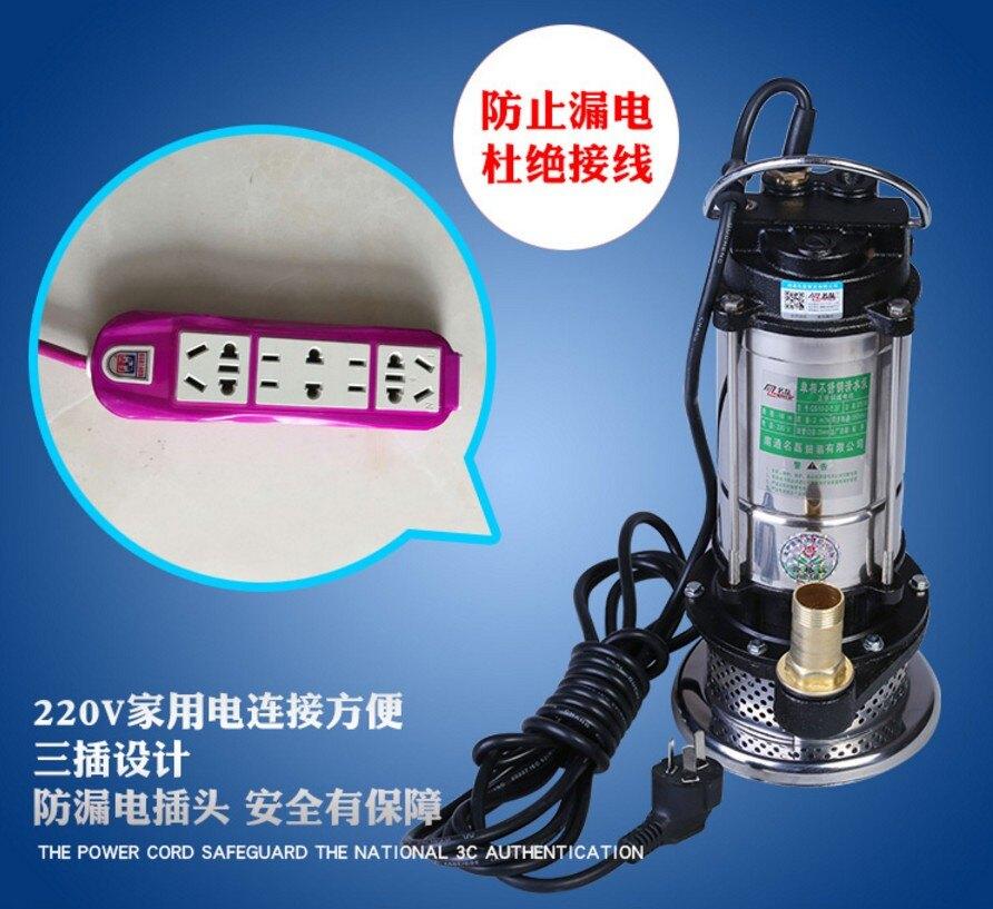 兩項農用潛水泵2寸抽水泵家用220v高揚程潛水電泵1