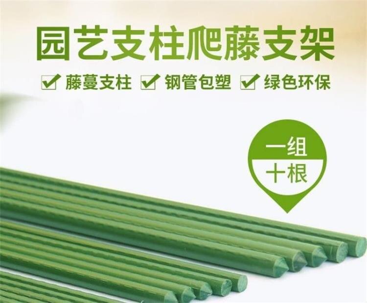 【10支裝】園藝支柱花支架花包塑鋼管爬藤支架藤蔓【如夢令園藝】