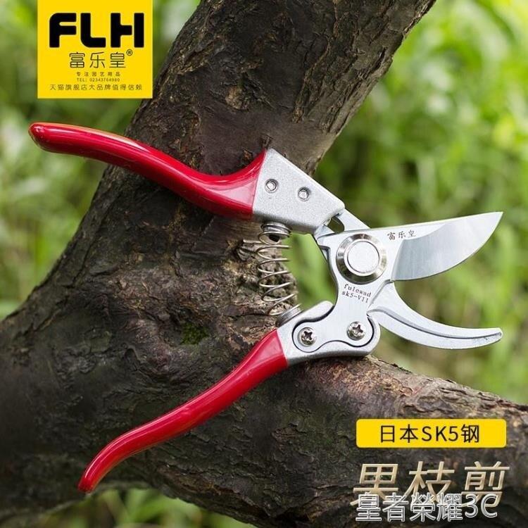 修枝剪 修枝剪 家用樹枝剪強力綠化園林省力鋒利果樹桑剪園丁剪園藝剪刀