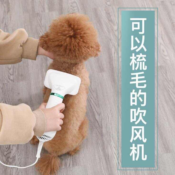 110V寵物吹風梳狗狗拉毛2合1吹風機貓咪烘幹熱風梳子按摩梳子