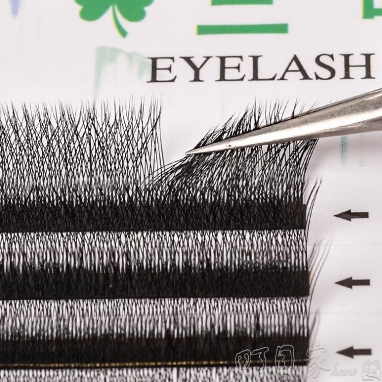 三葉草睫毛嫁接3D仙朵一秒開花濃密種植假睫毛超軟yy型