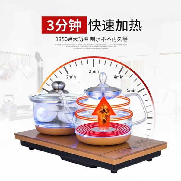 自動上水壺涌泉式泡茶機