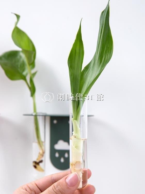 北歐水培玻璃瓶壁掛置物架牆壁裝飾綠植物栽培花瓶