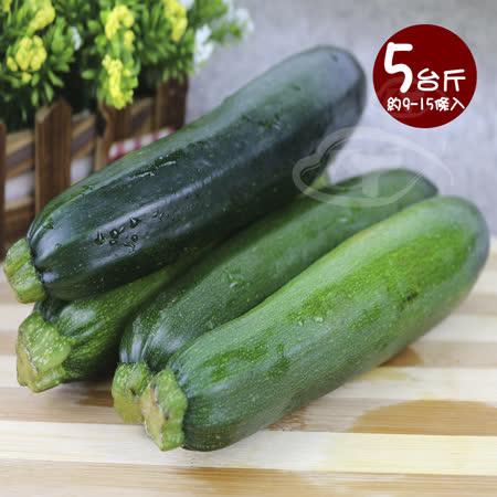 【鮮採家】台灣特選清爽嫩綠櫛瓜節瓜5台斤(約9-15條入)