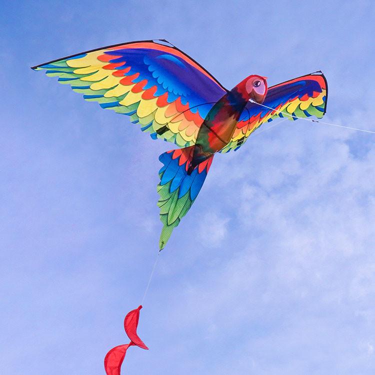 3d立體鸚鵡造型風箏(金剛鸚鵡)(140*230)(全配/附150米輪盤線)888便利購