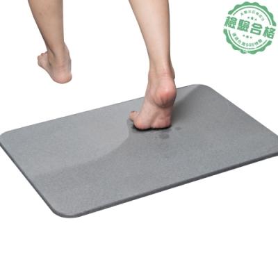 樂嫚妮 加大珪藻土吸水速乾地墊/腳踏墊/浴墊-60X39cm-(5色)