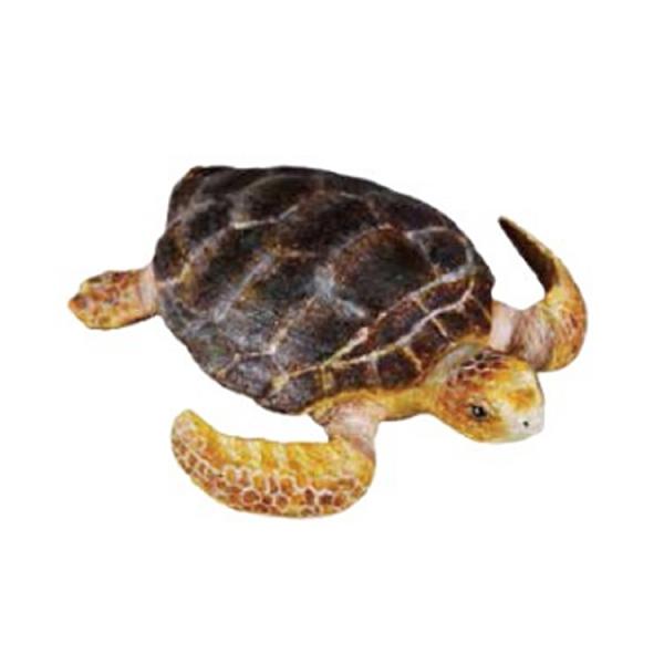 【永曄】collectA 柯雷塔A-英國高擬真動物模型-海洋生物-赤蠵龜