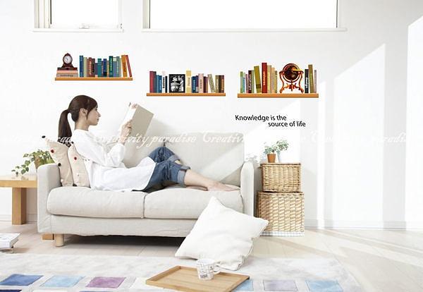 大款AY-743第三代可移動式DIY藝術裝飾無痕壁貼/牆貼/防水貼紙