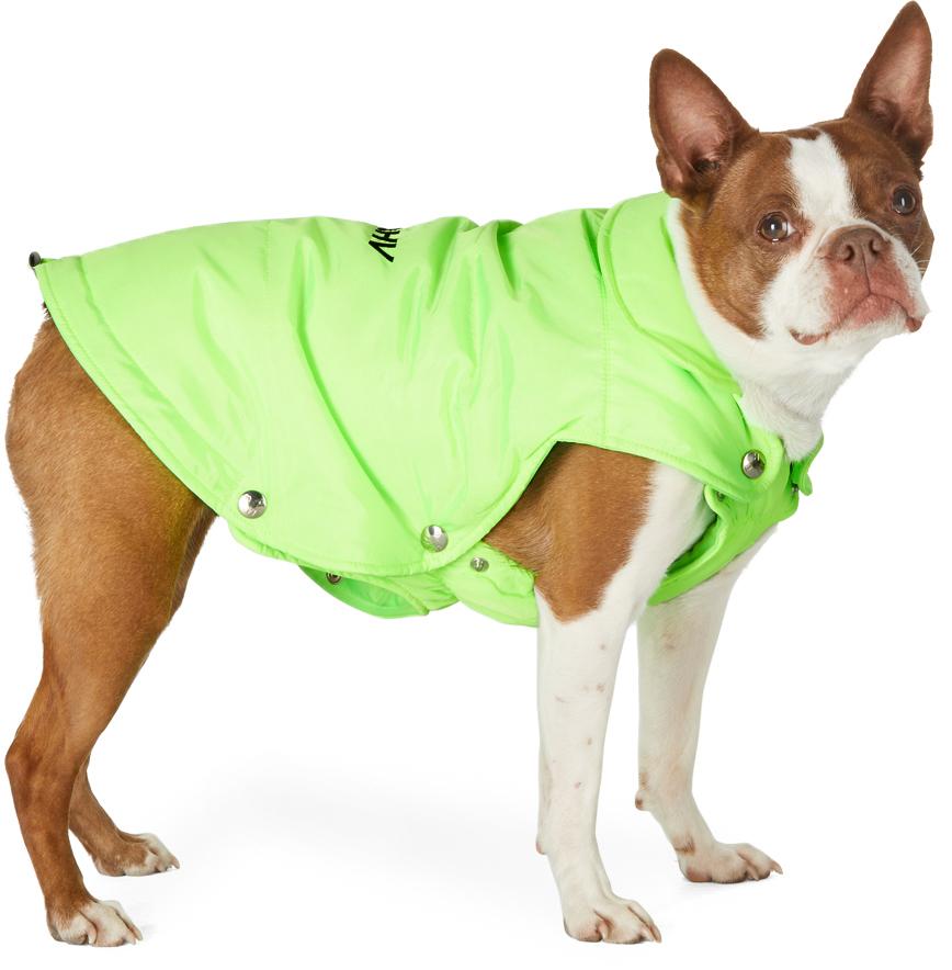 MISBHV 绿色填充宠物夹克
