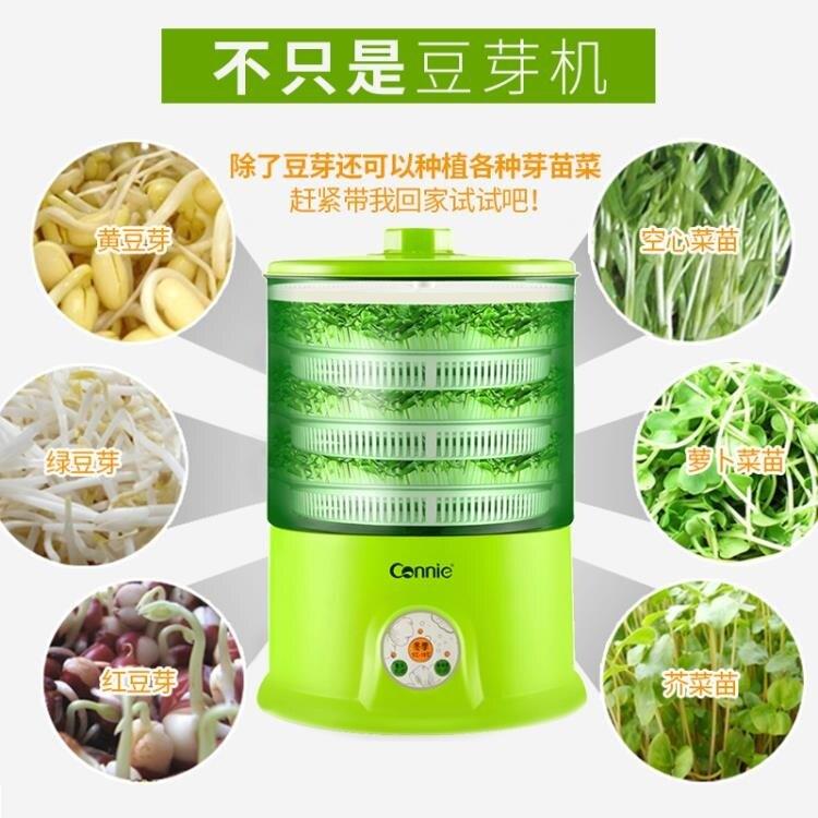 豆芽機 康麗豆芽機家用全自動特價正品清倉雙層大容量生豆芽機發豆芽盆罐