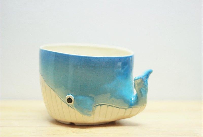 鯨魚盆栽植物(M號)