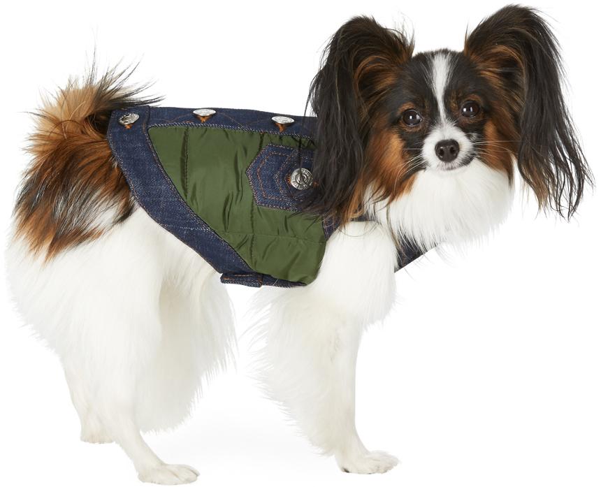 Dsquared2 绿色 Poldo Dog Couture 联名小号 Vancouver 宠物马甲