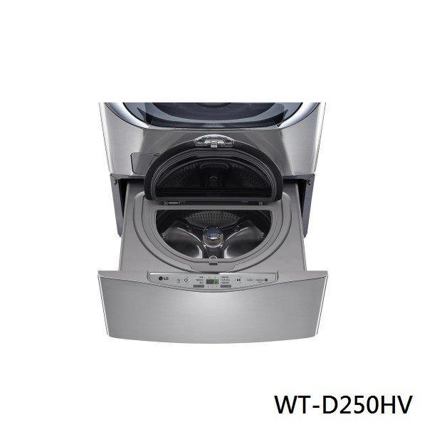 LG 樂金 迷你洗衣機 加熱洗衣2.5公斤 WT-D250HV 星辰銀 原廠保固 結帳更優惠 黑皮TIME