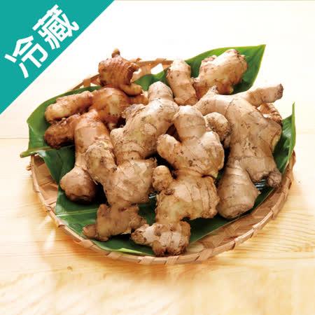 台灣嚴選老薑1袋(300g±5%/袋)