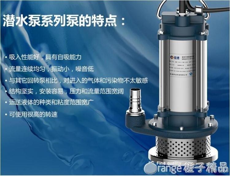 臣源潛水泵220V家用小型不銹鋼抽水機高揚程農用灌溉抽水排污水泵