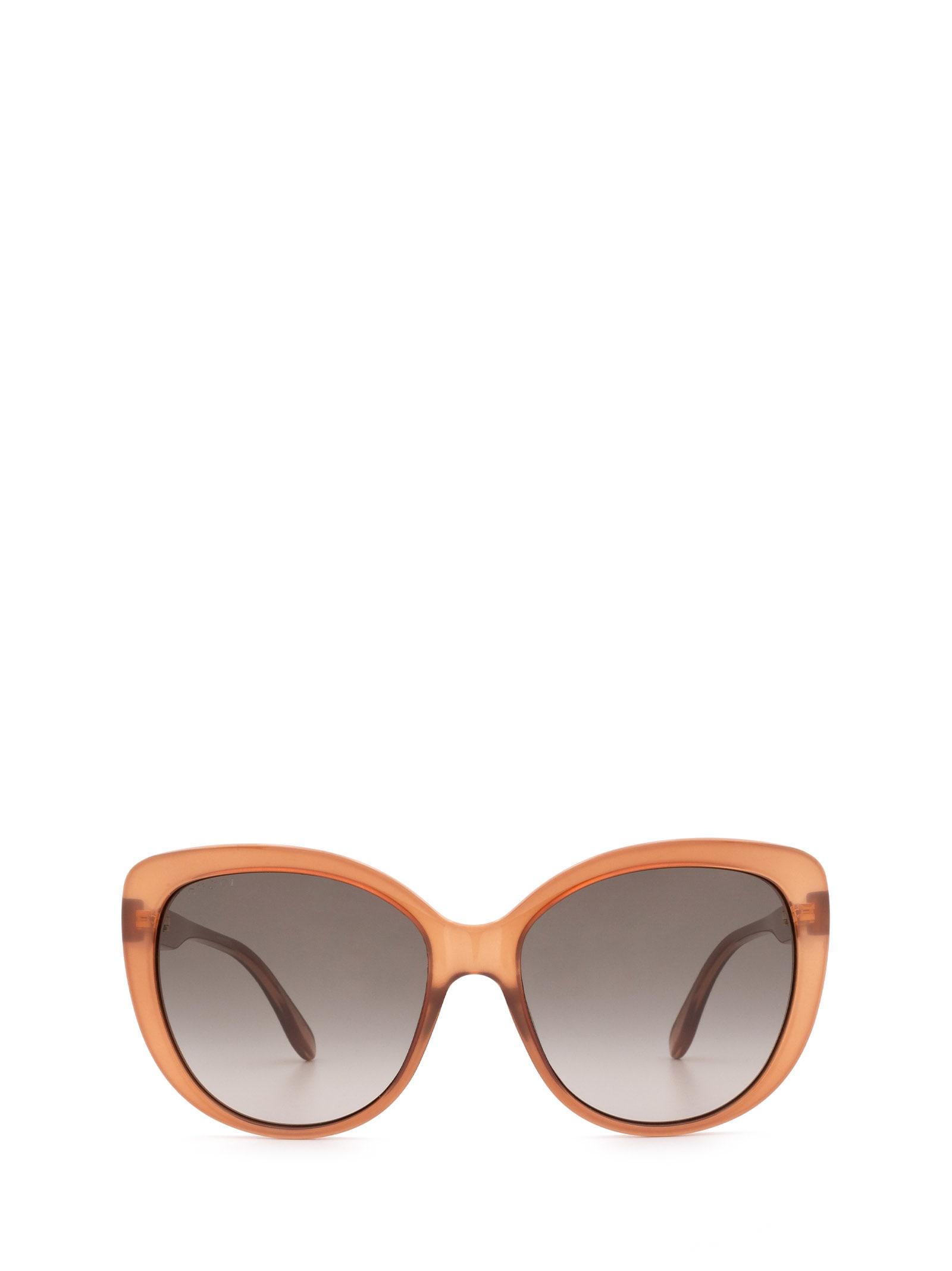 Gucci Gucci Gg0789s Brown Sunglasses
