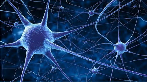 Natural Methods for Helping Multiple Sclerosis