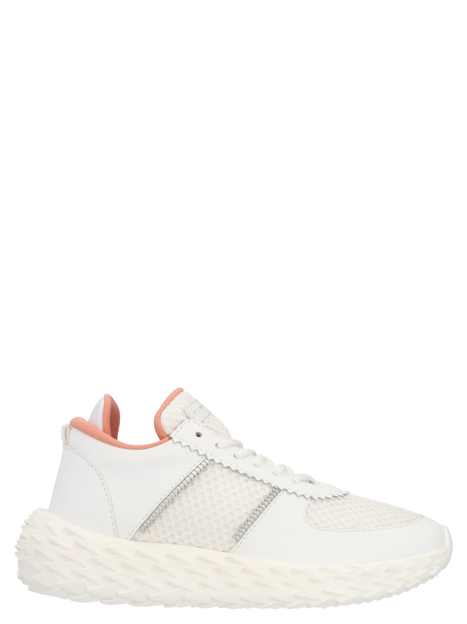 Giuseppe Zanotti new Urchin Shoes
