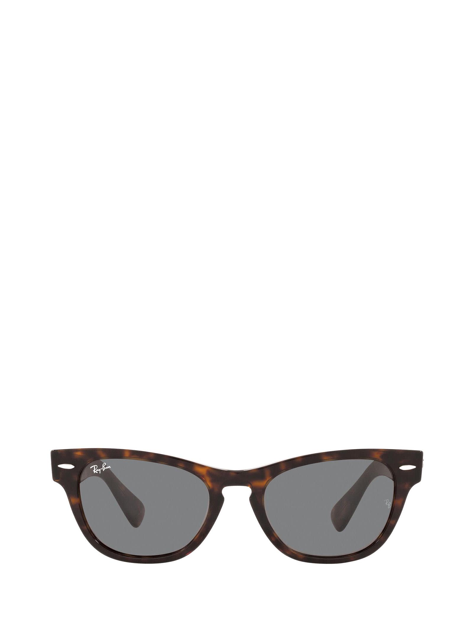 Ray-Ban Ray-ban Rb2201 Tortoise Sunglasses