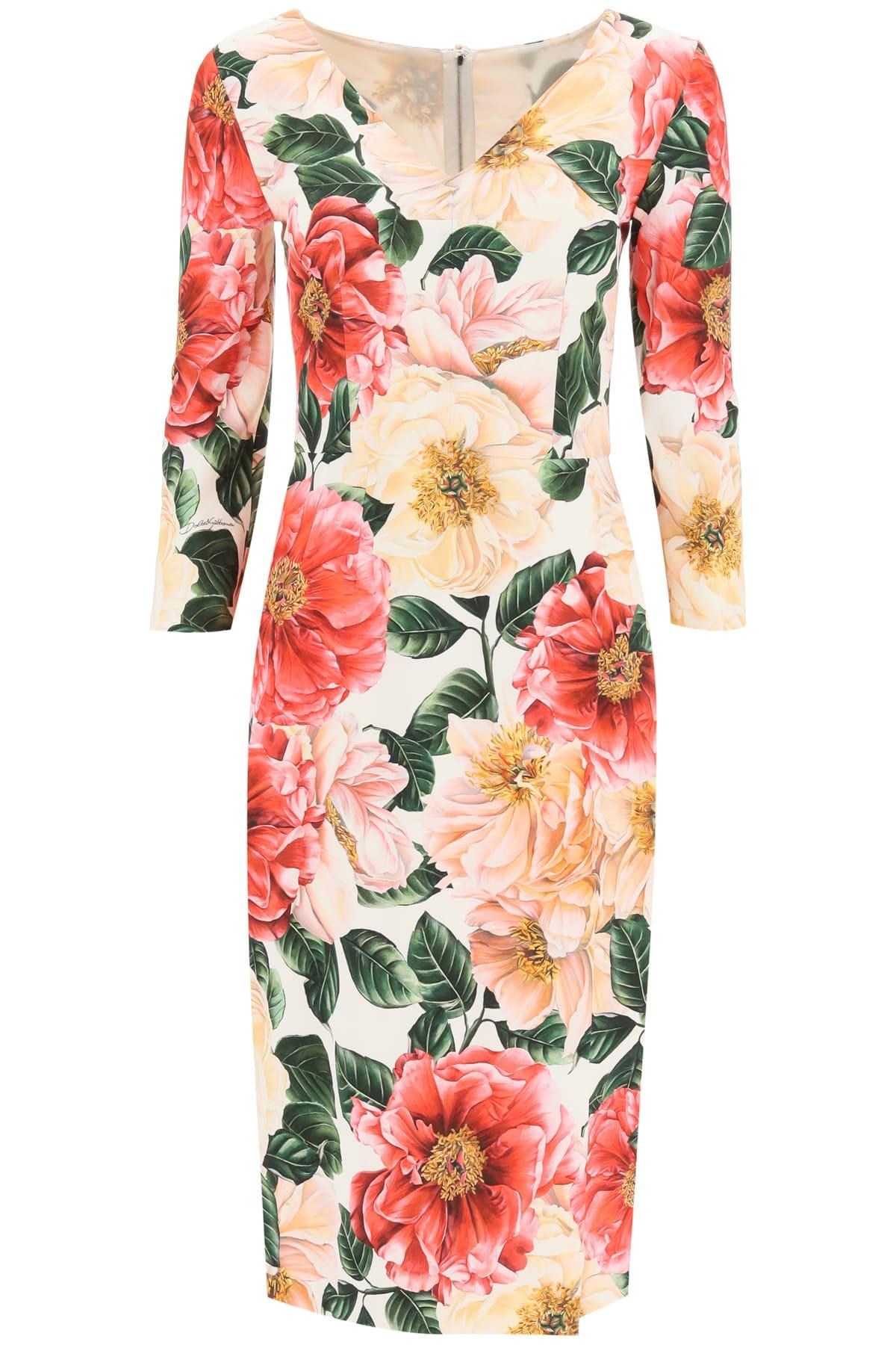 Dolce & Gabbana Camellia Print Cady Dress