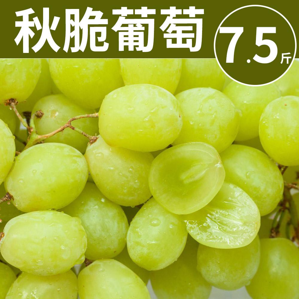 [甜露露]美味炸彈!南非秋脆綠無籽葡萄(7.5斤±10%)