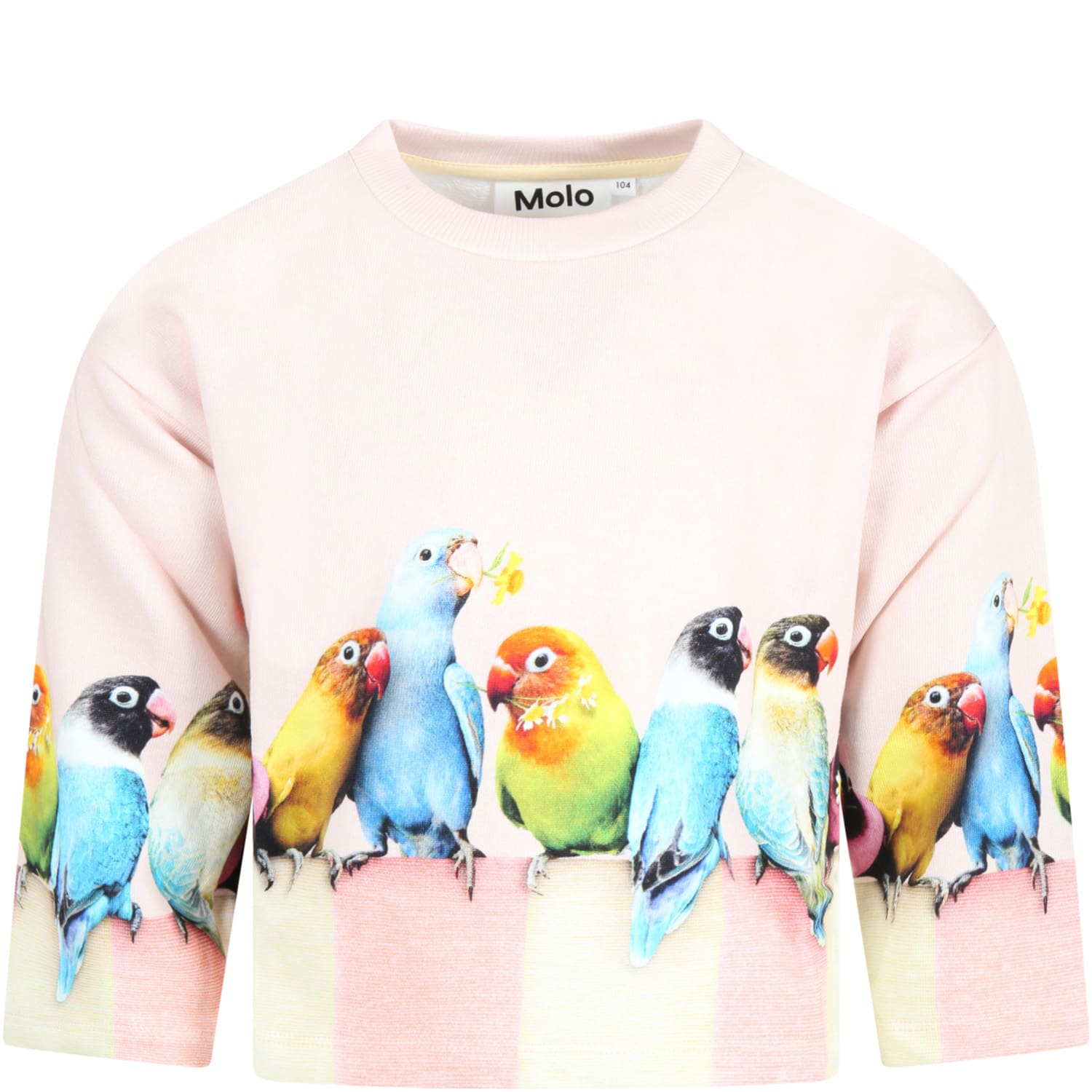 Molo Pink Sweatshirt For Girl With Parrots