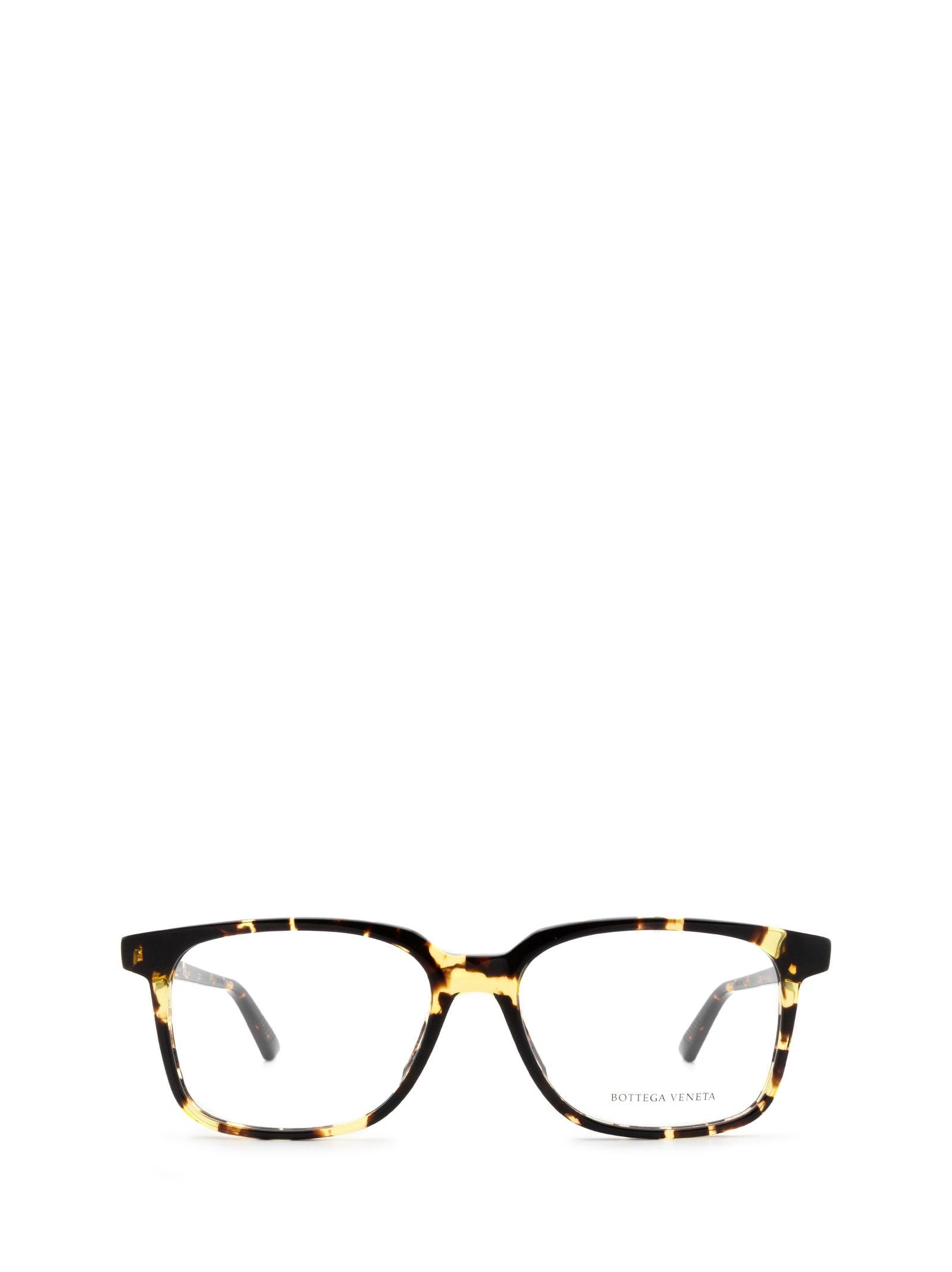 Bottega Veneta Bottega Veneta Bv1024o Havana Glasses