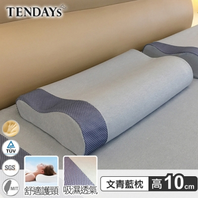 TENDAYS 玩色柔眠記憶枕(文青藍) 10cm