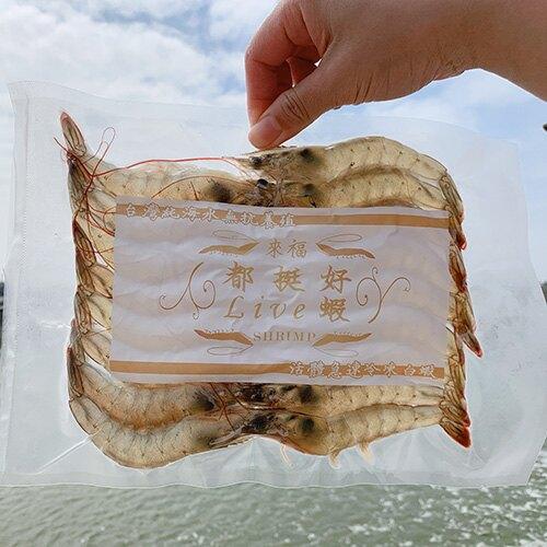 【都挺好Live蝦】無毒活凍白蝦-大(四包入) 300g/包 約17-19隻蝦 台灣養殖 產地直送 -60度活體急速冷凍 出口檢驗認證 快速出貨