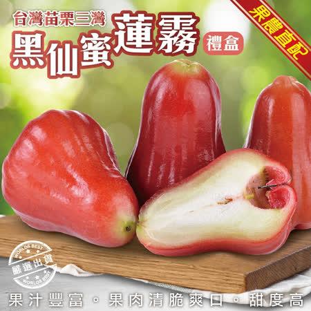 【果農直配】頂級黑仙蜜蓮霧禮盒(14入/盒 約2kg±10%含盒重)