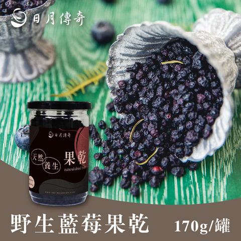 *日月傳奇野生藍莓果乾170g