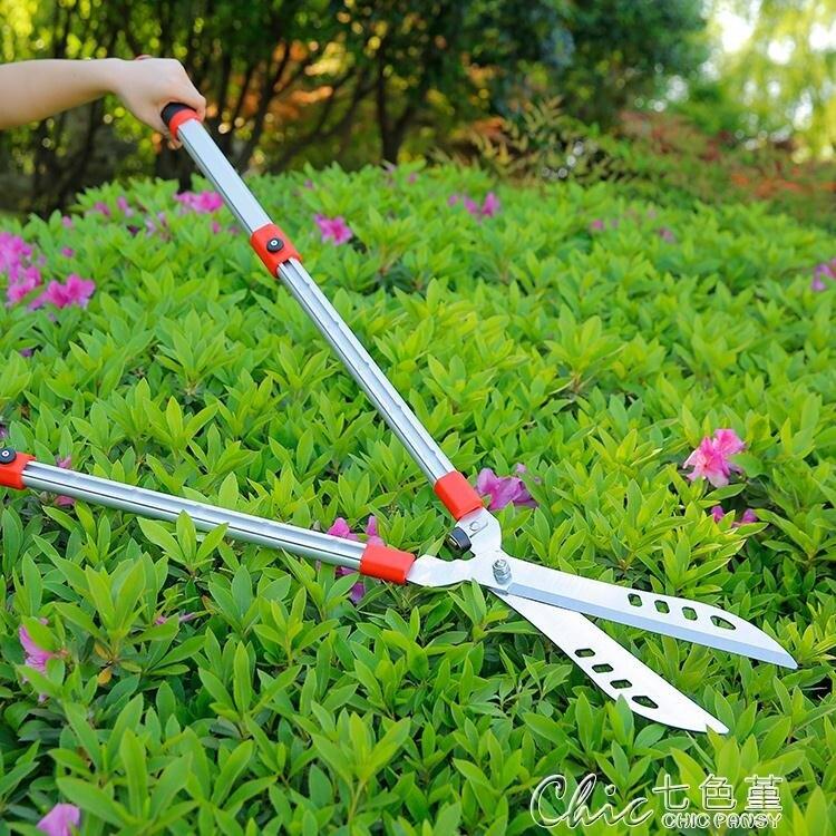 修剪樹枝剪刀花剪園藝剪刀修枝剪草坪綠籬剪園林工具剪花草大剪刀