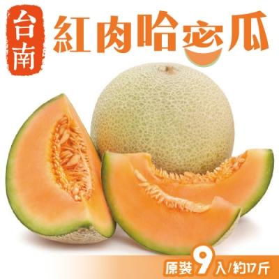 顧三頓-台南嚴選紅肉哈密瓜XL號(原裝9顆/約17斤)
