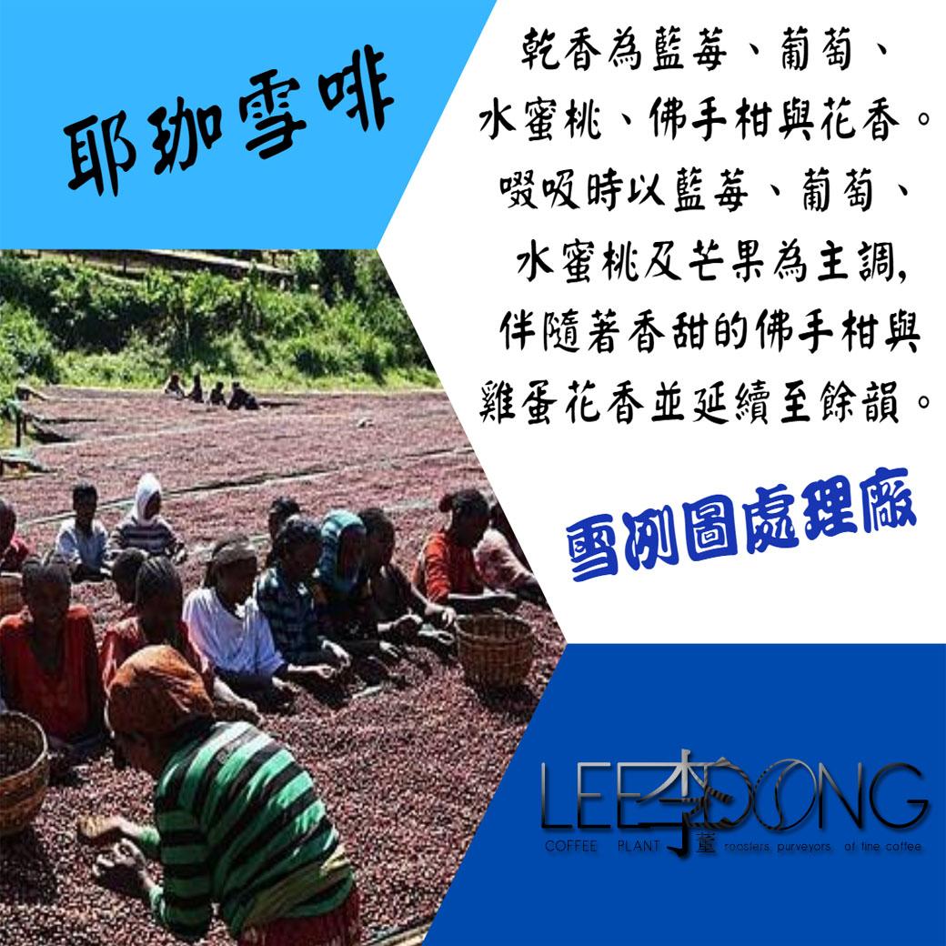 衣索比亞㊣耶珈雪啡 科洽雷 果丁丁村 阿利姆布卡托小農 G1 紫色莓果炸彈 日曬處理 (淺培)  三次手挑李董咖啡