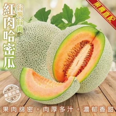 【果農直配】紅肉哈密瓜5入/箱(每顆1100g-1300g)