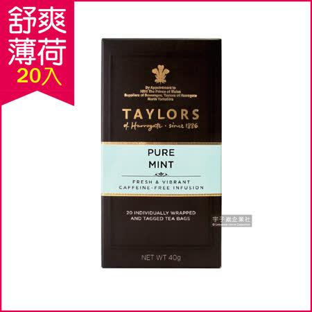 英國Taylors泰勒茶 舒爽薄荷茶 20入/盒 花草茶 無咖啡因 可單喝或加糖
