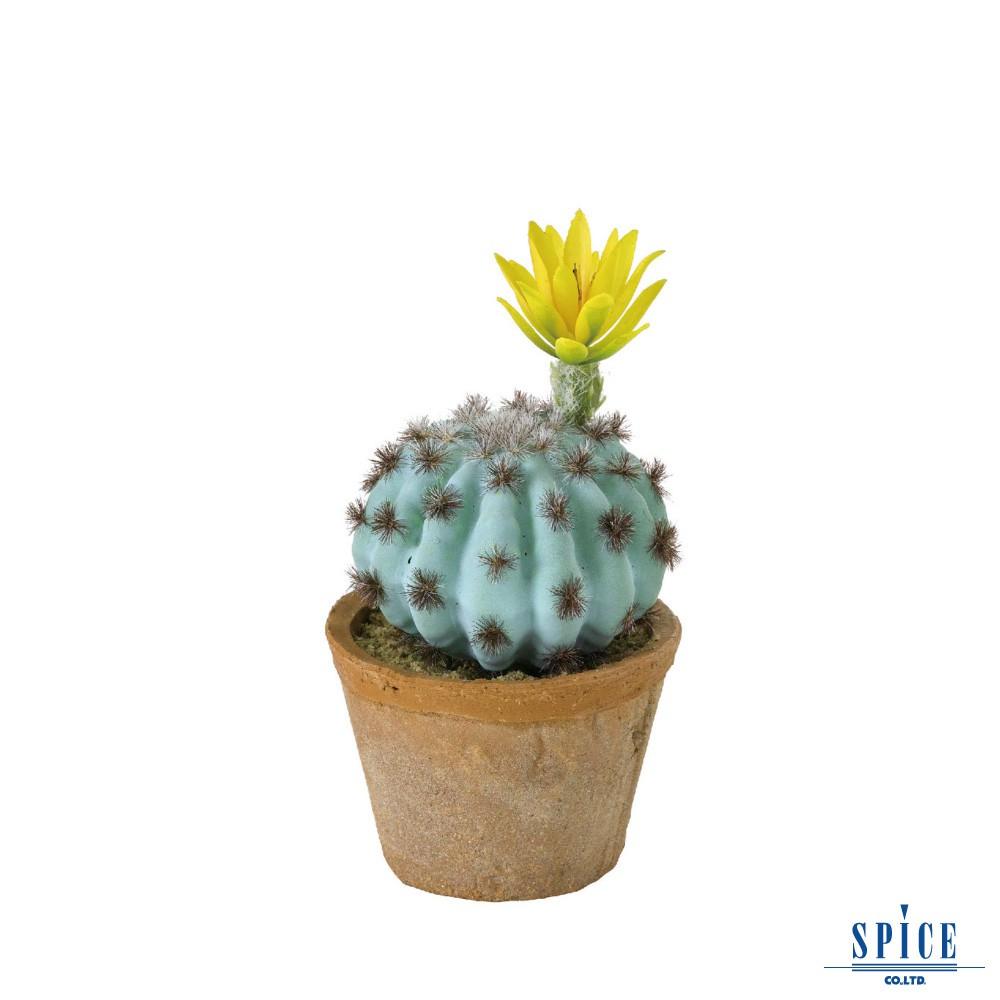 SPICE 日本雜貨 人造小花仙人掌盆栽 假盆栽 擺飾 假花 多肉 植物