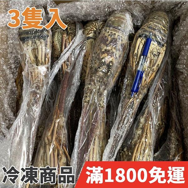 饕客食堂 3隻 巴西生龍蝦 500g±10% 海鮮 水產 生鮮食品