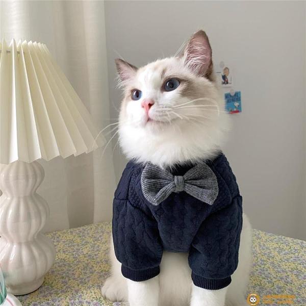 IG寵物狗狗貓貓兩腳冬裝保暖可愛小奶貓布偶貓秋冬天貓咪衣服【小狮子】
