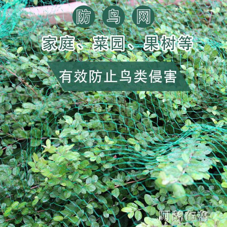 防鳥網 大棚葡萄櫻桃多肉防鳥網園藝果樹果園陽台菜