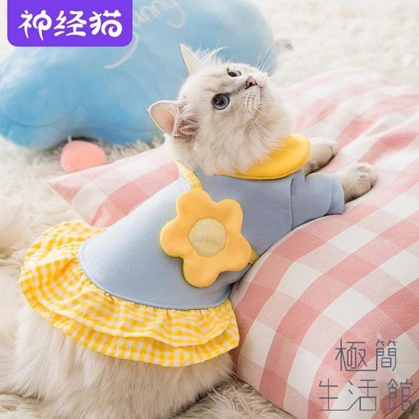 可愛公主裙貓咪衣服防掉毛春夏季薄款服飾【極簡生活】