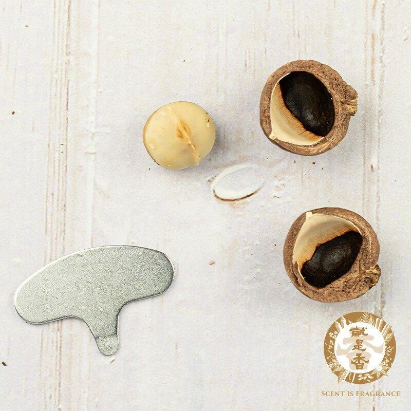 【就是香】夏威夷豆 500g,380項農藥殘留檢驗合格「原味帶殼 附剝殼器」罐裝